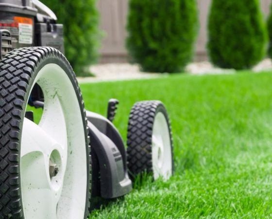 Lawnmower Sales & Service